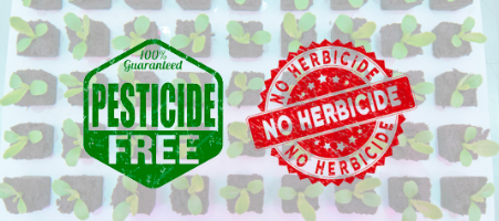 Pesticides and herbicides free